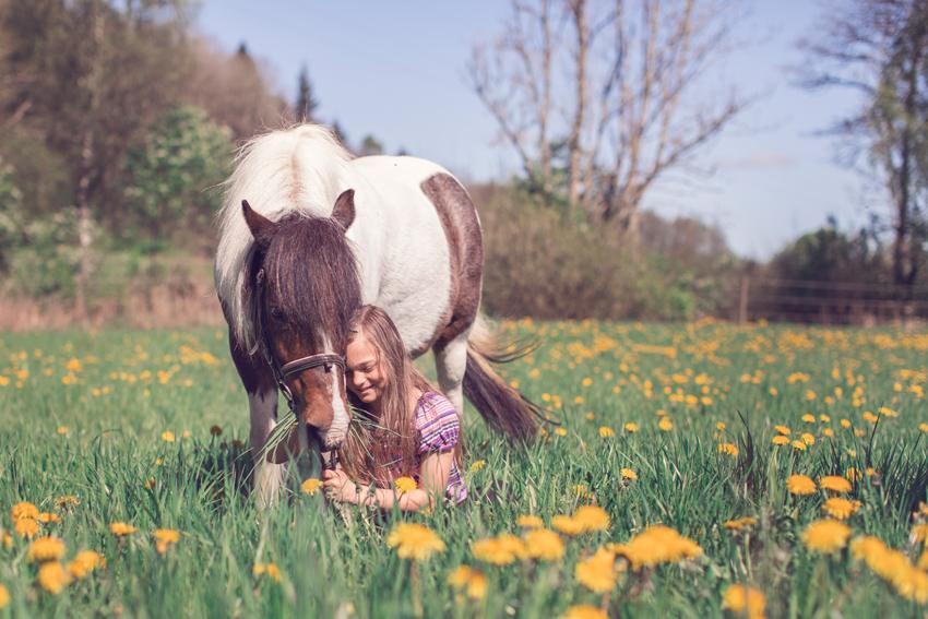 creandophoto_horse_portrait_children_fotografgoteborg001
